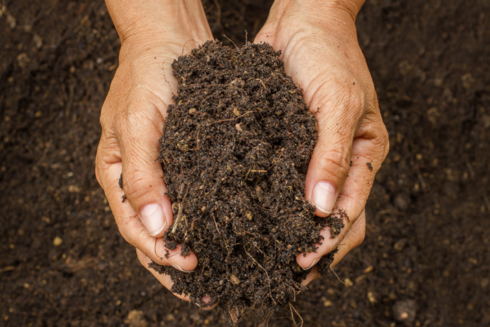 All About Soil | Co+op, welcome to the table