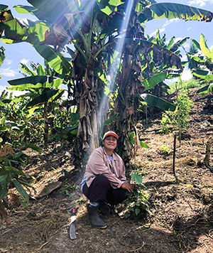 Peruvian female farmer by banana tree