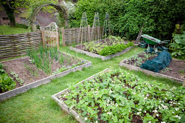 How to build a raised bed co op stronger together - Small farming ideas that pay off ...