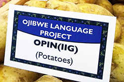 potatoes sign in Ojibwe language