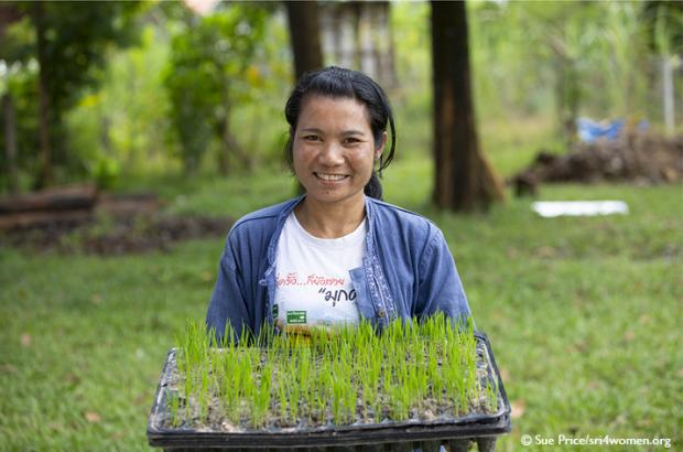 Woman holding tray of rice shoots. Photo courtesy of Lotus Foods