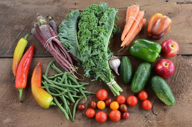 Abundance of fresh, colorful, local produce laid you on wood