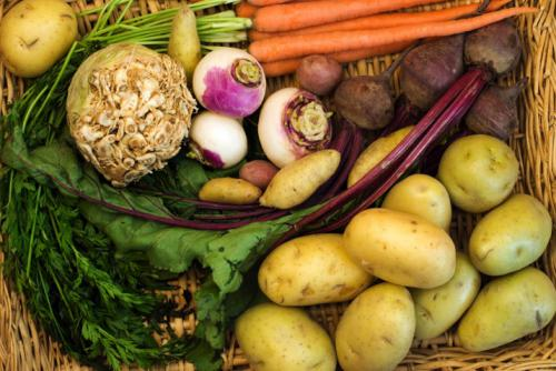 Root Vegetables Co Op Welcome To The Table