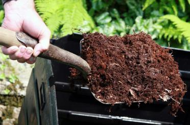 Using Organic Fertilizers