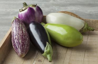 Eggplant varieties in wooden tray
