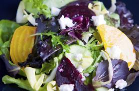 Golden Beet Salad with Honey Apple Dressing