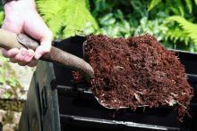 Using Organic Fertilizers