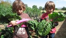 Encouraging the Gardening-Gatherer Gene