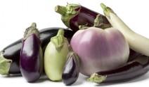 Eggplant Come Summer