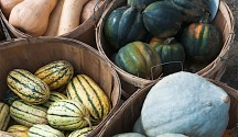 Delightful Winter Squash
