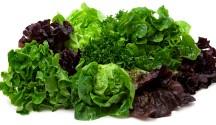 Let Us Lettuce Your Shopping List