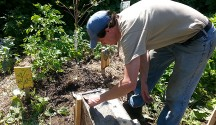 Syracuse Real Food Co-op's Permaculture Backyard