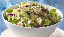 Grilled Tempeh Salad with Sesame-Ginger Dressing