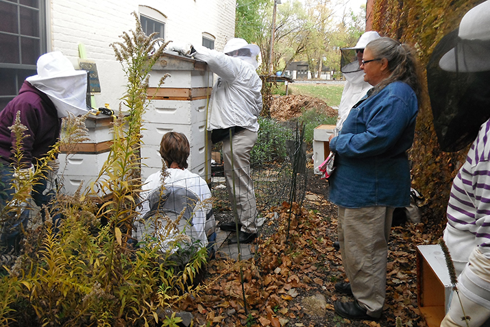 Urban Beekeeping Project Keeps Co Op Buzzing